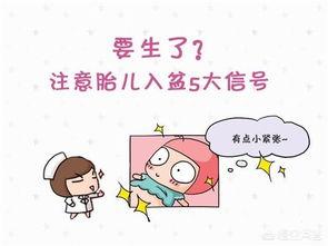胎儿入盆的症状有哪些?插图1