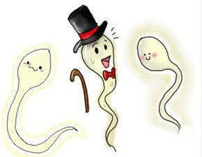 精子畸形率高的原因有哪些?