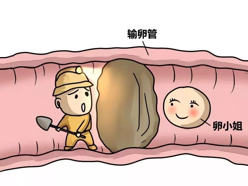 输卵管造影危害有多大?