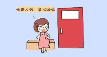 孕妇的产前征兆有哪些?插图