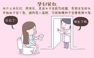 孕妇见红的症状有哪些?插图