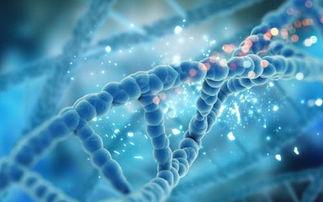 哪些情况要做染色体检查?插图1