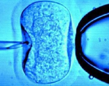 孕妇能跷二郎腿吗?这样做容易危及胎儿