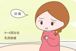 试管移植后怎样防止胚胎停育?