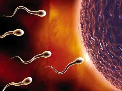 二胎生产需要多长时间 生二胎会比一胎快吗
