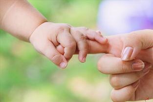 试管怀孕的建档流程和自然怀孕是一样的吗?